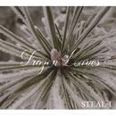 Flower Leaves(ハイレゾ音源)/STEAL-I