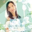 心に咲く花/原 由実