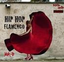 HIPHOP FLAMENCO/¥uK-B