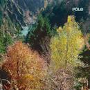 Wald/Pole
