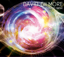 Energies of Change/David Gilmore