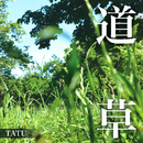 道草/TATU