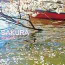 SAKURA/Stella☆