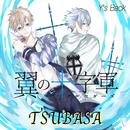 TSUBASA/Y's Back
