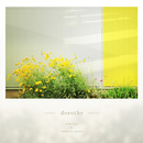 dorothy/sima kim & american green