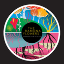 Dismantle and Rebuild (Deluxe Edition)/The Ramona Flowers