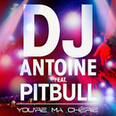 You're Ma Cherie (DJ Antoine vs Mad Mark 2k13 Radio Edit) [feat. Pitbull]/DJ Antoine