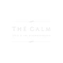 The Calm/SALU & the dreambandgunjo