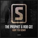Hunt You Down/The Prophet & Rob GEE