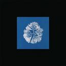 Silk Noise Reflex/James Tillman