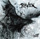 RAVEN Dtype/Royz