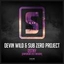 DSTNY (Emporium Anthem 2017)/Devin Wild & Sub Zero Project