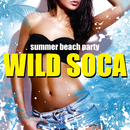 WILD SOCA -SUMMER BEACH PARTY-/V.A.