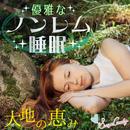 優雅なノンレム睡眠~大地の恵み~/RELAX WORLD