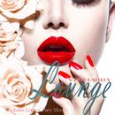 近代的でクールなラウンジパーティーに - White Gallery Lounge Exclusive Lounge Party Moods/V.A.