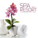 開放的な気分で聴きたいスパ&リゾート音楽 - Spa and Resort Music the Best Selection from the World/V.A.