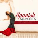 熱い血ほとばしるフラメンコ音楽 - Spanish Memories (The Best of Flamenco & Mediterranean Guitar Compositions)/V.A.