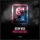 Indestructible/Devin Wild