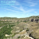 WiLd wiNd/GreenApple