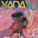 YADAYO/竹本健一