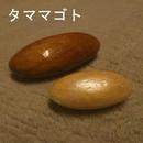タママゴト/kenji takemoto