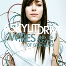 WIRES AND THE CONCEPT OF BREATHING/A SKYLIT DRIVE