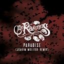 PARADISE (JOAKIM MOLITOR REMIX)/THE RASMUS