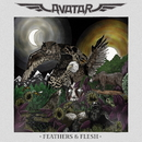 FEATHERS & FLESH/AVATAR