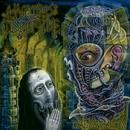 DEAD REVOLUTION/HAMMERS OF MISFORTUNE