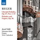 レーガー: オルガン作品集 第14集 5つのやさしい前奏曲とフーガ/52のやさしいコラール 前奏曲/ジョセフ・スティル(オルガン)