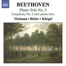 ベートーヴェン: ピアノ三重奏曲集 第3集 - ピアノ三重奏曲第3番/交響曲第2番(ピアノ三重奏編)/ジリオン・トリオ