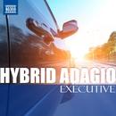 Hybrid Adagio EX ~ ハイブリッド・アダージョ エグゼクティブ[ドライブ・クラシック - 愛車と愉しむ極上の静謐]/Various Artists