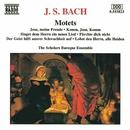 J.S. バッハ: モテット集 BWV 225 - 230/スコラーズ・バロック・アンサンブル