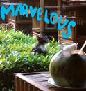 Perfect/Marvelous Mark