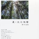 夏・光の残響/梨木良成