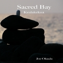 Sacred Bay/ジョー奥田