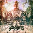 Solstice/Prompts