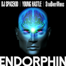 ENDORPHIN (feat. YOUNG HASTLE)/DJ SPACEKID