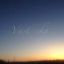 Vast sky/Navy gray