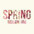 SPRING MELLOW R&B/The Illuminati