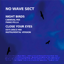 Night Birds/NO WAVE SECT