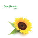 Sunflower/SLAM