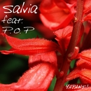 Salvia (feat. P.O.P)/YAPANI!
