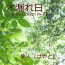 木漏れ日(ブラッシュアップ・バージョン)/隼人(はやと)。