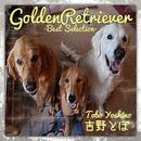 GoldenRetriever ~Best Selection~/吉野とぼ