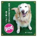 リボン (映画『生まれ変わりの村』挿入歌)/岩崎良美