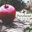 テノヒラ/porehead