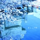 君がいる世界/桜