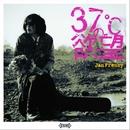 37℃の欲望/ヤン・フレンジー