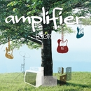 amplifier/EGGTOP